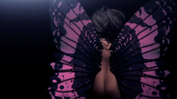 Butterfly Visual Content